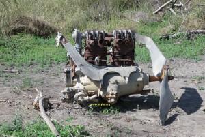 Motor Lorraine Dietrich 12 de 450HP, 12 cilindros enfriado por agua